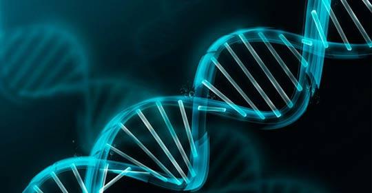 Nueva unidad de genética en Clínica Alxen