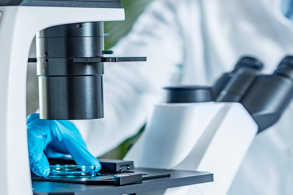 Fecuncación In Vitro - Clínica Alxen