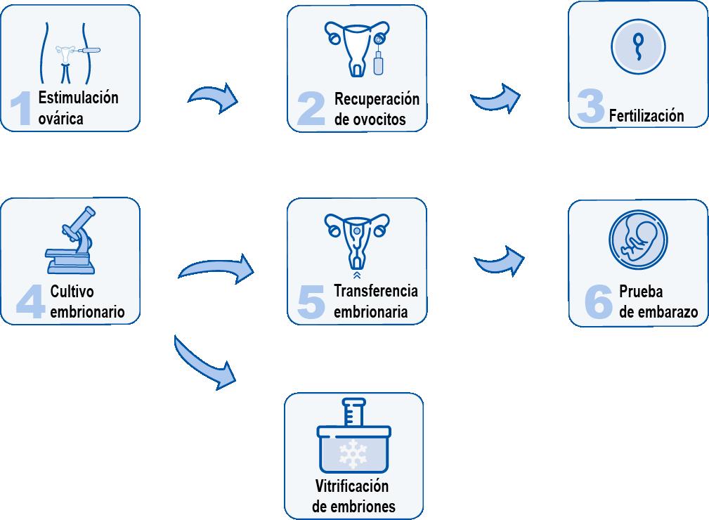 Fecundación in Vitro-Clínica Alxen